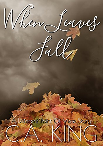 When Leaves Fall (A Different Point of View Story Book 1)